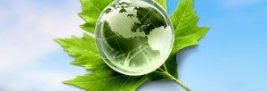 Master en environnement